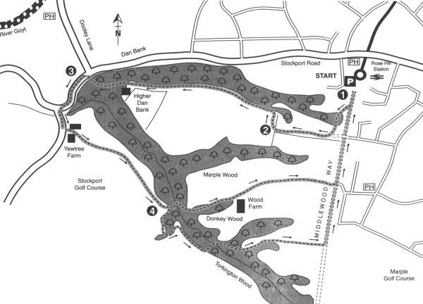 Map for Walk No. 6 - Donkey Wood