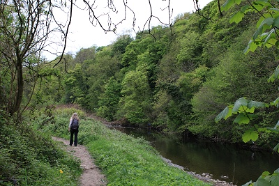 By the River Goyt in 2010