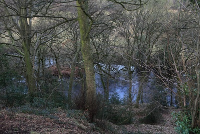 The old ornamental pond visible through the leafless trees