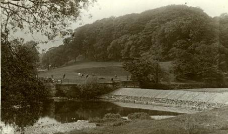 The Weir in better days
