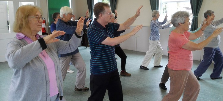 Marple Tai Chi in progress